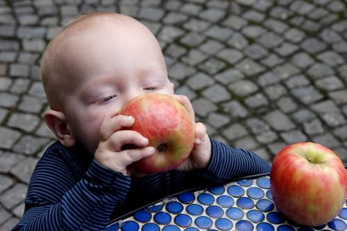 Essensplan - Babyernährung